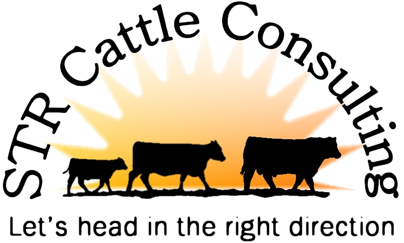 STR Cattle Consulting